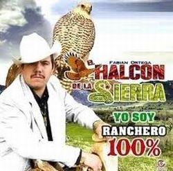 El halcón de la Sierra