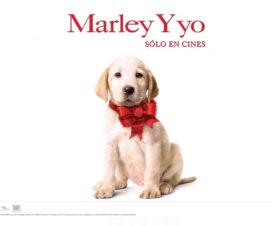 Marley & Me Trailer